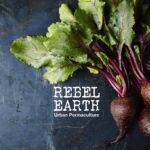Organic food Cape Town
