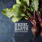 Organic food urban Cape Town