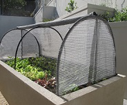 Urban organic farm